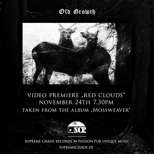 Old Growth Video Announcement