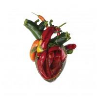 CARCASS - Torn Arteries (DIGI)