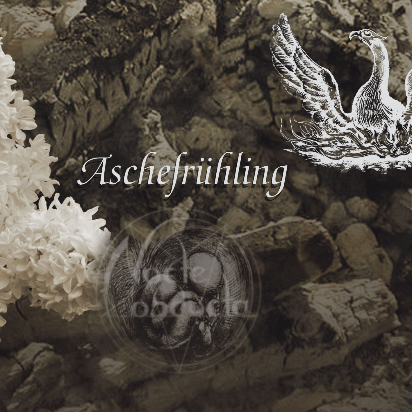 NOCTE OBDUCTA - Aschefrühling  (CD-Single)