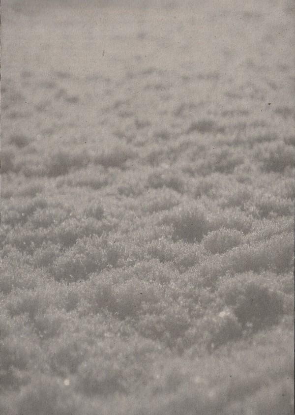 PAYSAGE D'HIVER - Schnee [A5-DIGI] (DIGI)