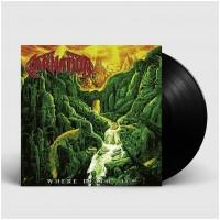 CARNATION - Where Death Lies [BLACK] (LP)