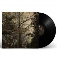 DÄMMERFARBEN - Herbstpfad [BLACK] (LP)