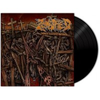 ZOMBIFIED - Carnage Slaughter And Death (LP)